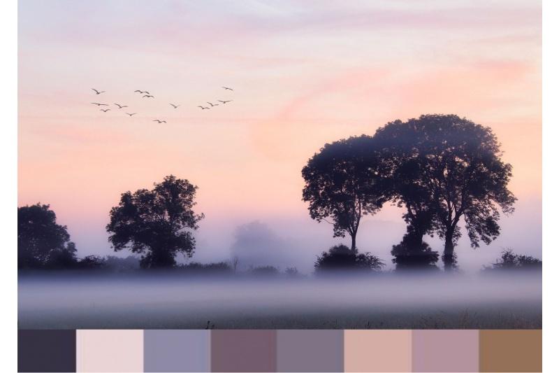 3d1625-mist.jpg